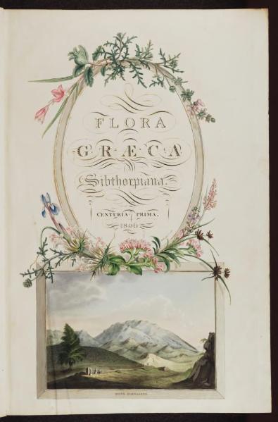Flora_Graeca,_Volume_1.djvu