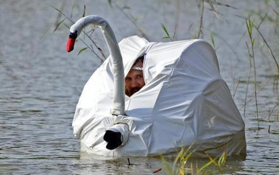 This is pretty much how I imagine myself in 10 years' time; luckily I'm still at the half-hearted ambling stage and have better things to do than build a rather unconvincing replica swan!